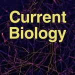 CurrentBiology