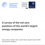 Survey of energy companies