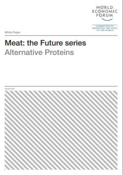 WEF Alternative Proteins Cover